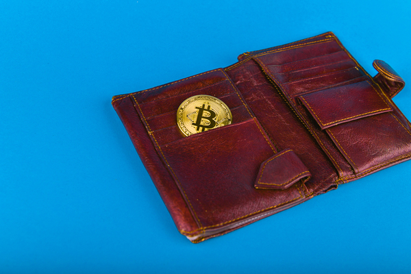Leather wallet with gold bitcoin.